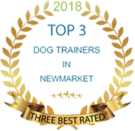 Top 3 dog trainers in newmarket