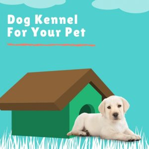 Dog Kennel For Your Pet