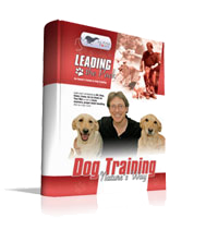 Dog Training Manual