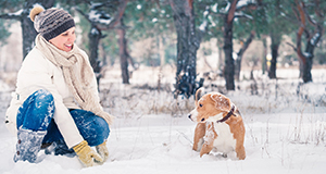 Winter Playtime Tips for Your Dog