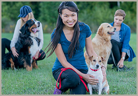 Dog Training Services in East Gwillimbury